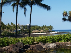 A view across the Waikoloa Resort where we stayed.