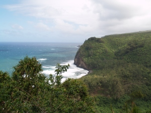 View from a remote lookout down to a black sand beach.  Side note:  we climbed all the way down and back up this cliff...go me!